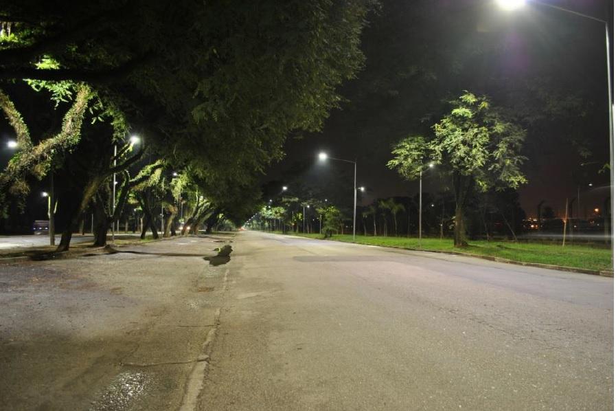 Sistema de iluminação e manejo de árvores da Cidade Universitária